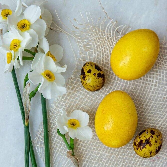 пасхальное яйцо в коркуме