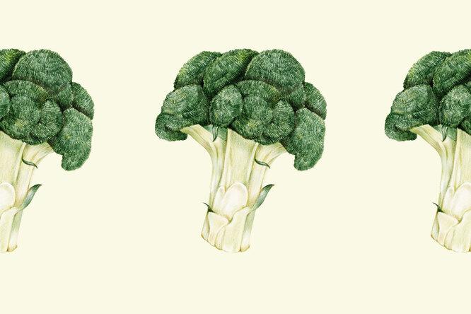 Почему диетологи считают брокколи самым важным овощем? Вчем его польза ивред