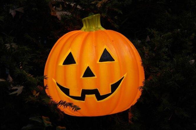 хэллоуин, тыква на праздник