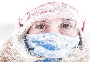 Остаемся зимовать. 10 лучших кремов для зимнего ухода