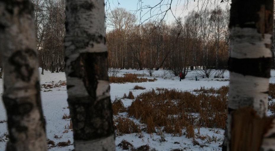 Родители 9-летнего мальчика, найденного мертвым влесополосе Екатеринбурга, состояли всекте