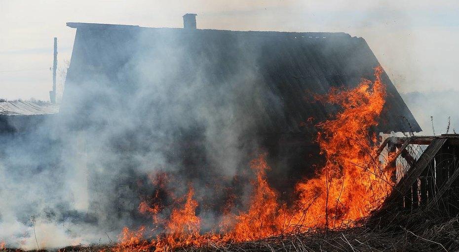 «Отобрали детей, сожгли дом, морят голодом ребенка»: омбудсмен прокомментировала скандал вЧелябинской области