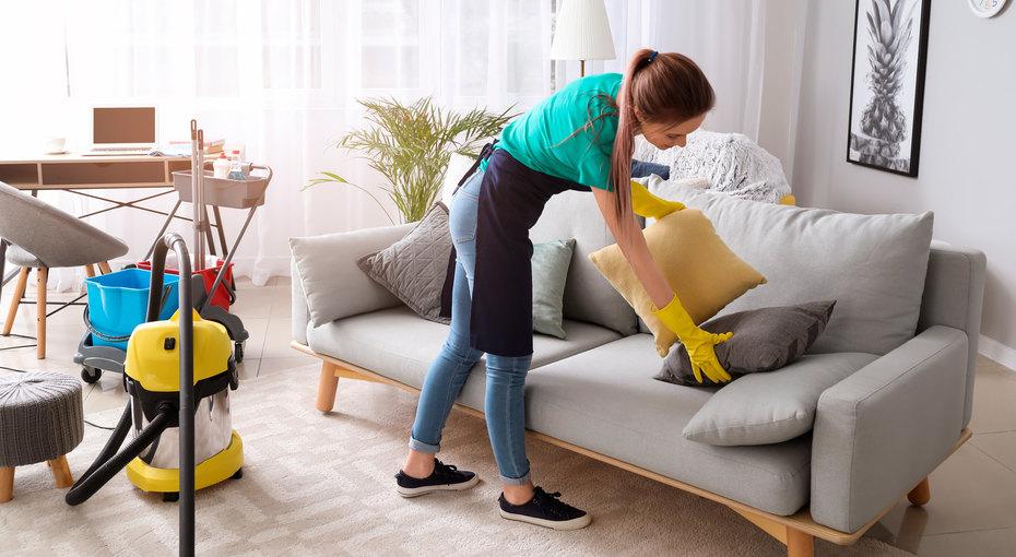 Пятна, разводы ишерсть: 5 проверенных способов почистить диван