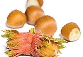 Сладкие рецепты с орехами