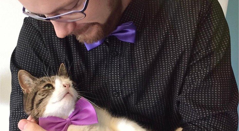 Монти: кот со смешной мордочкой стал любимцем интернета