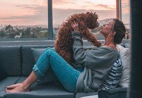 Собака, которая не пахнет псиной: 10 пород для людей с чувствительным носом