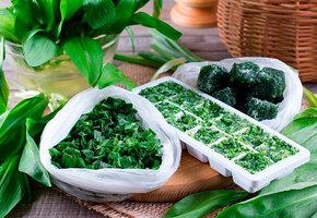 Как заморозить зелень, сохранив в ней все витамины