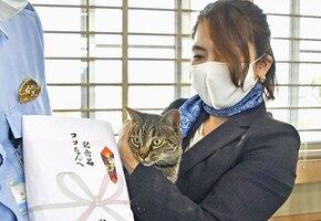 Кошка удостоена полицейских почестей за спасение человека
